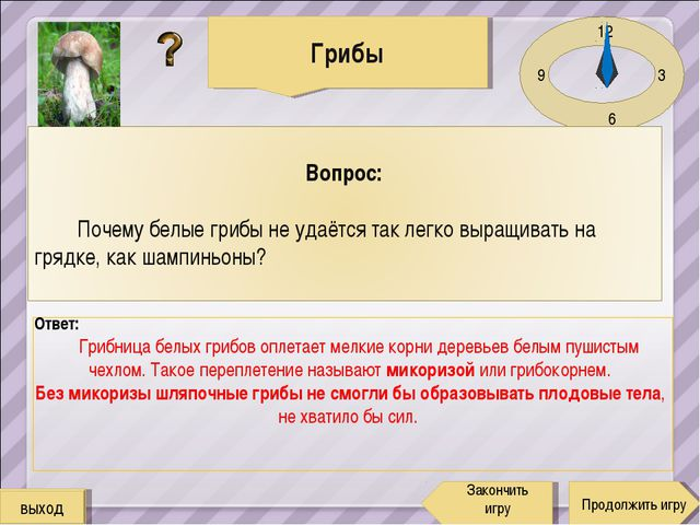 12 3 6 9 Ответ: Грибница белых грибов оплетает мелкие корни деревьев белым пу...