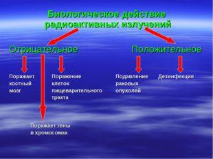 Биологическое действие радиоактивных излучений Отрицательное Положительное
