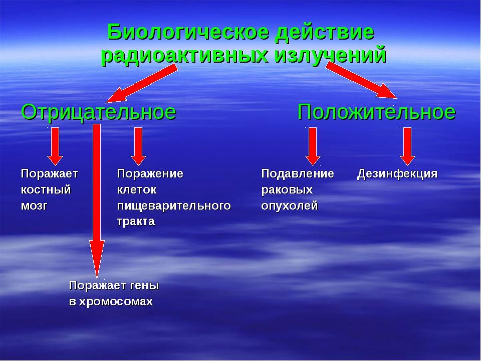 Биологическое действие радиоактивных излучений Отрицательное Положительное...
