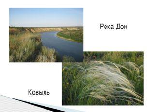 Река Дон Ковыль