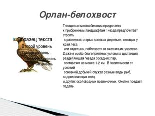 Орлан-белохвост Гнездовые местообитания приурочены к прибрежным ландшафтам Гн