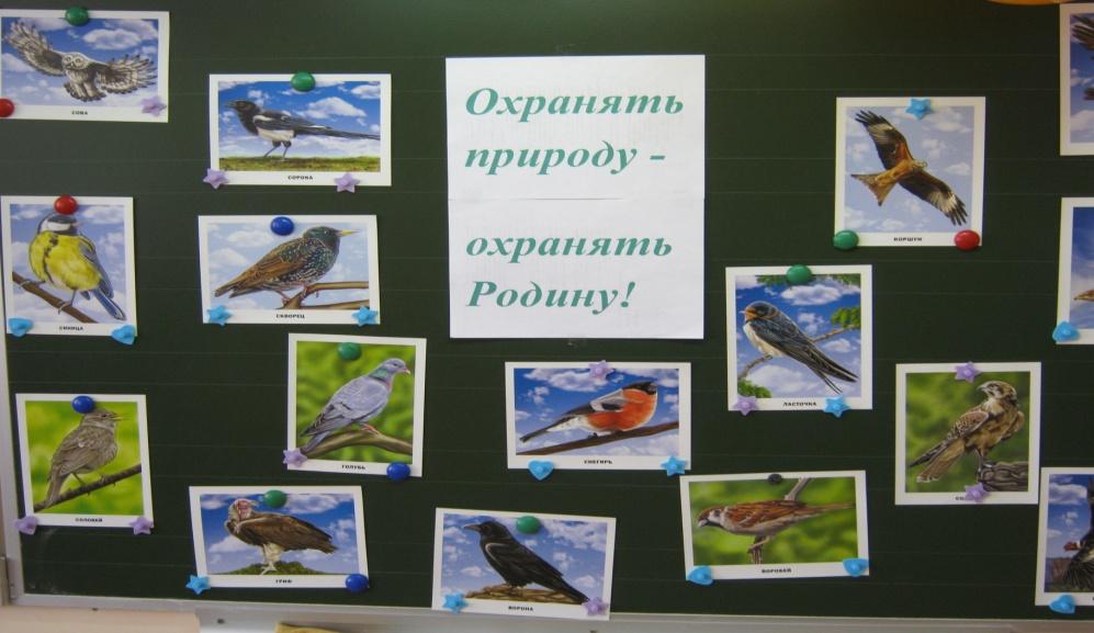 C:\Documents and Settings\Админ\Рабочий стол\фото мероприятия птицы\Изображение 398.jpg