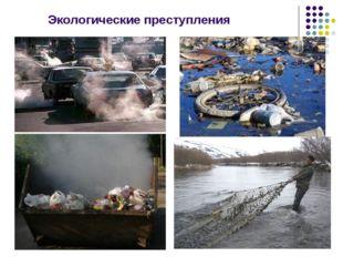 Экологические преступления