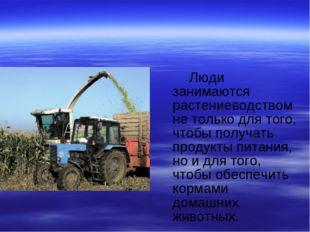 Люди занимаются растениеводством не только для того, чтобы получать продукты