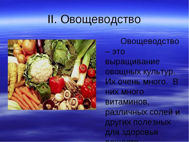 II. Овощеводство Овощеводство – это выращивание овощных культур. Их очень мно...
