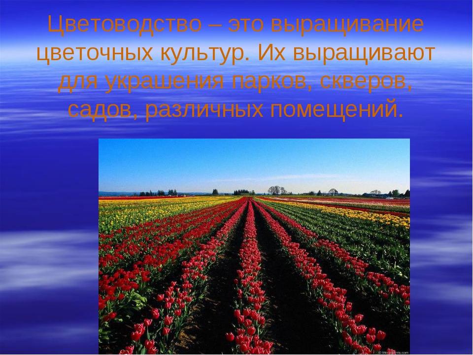 Цветоводство – это выращивание цветочных культур. Их выращивают для украшения...