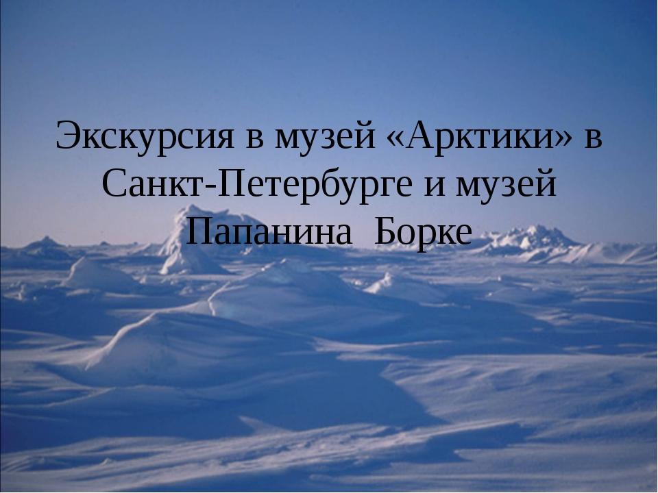 Экскурсия в музей «Арктики» в Санкт-Петербурге и музей Папанина Борке