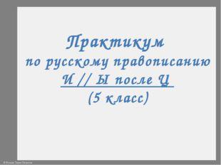 Практикум по русскому правописанию И // Ы после Ц (5 класс) © Фокина Лидия Пе