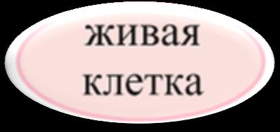 hello_html_m51bd921e.png
