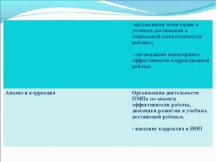 -организация мониторинга учебных достижений и социальной компетентности реб