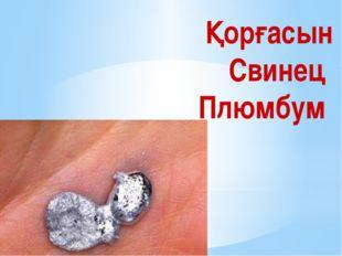 Оттегі Кислород Оксигениум