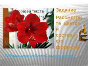 Лабораторная работа «Строение цветка» Задание Рассмотрите цветок и составьте