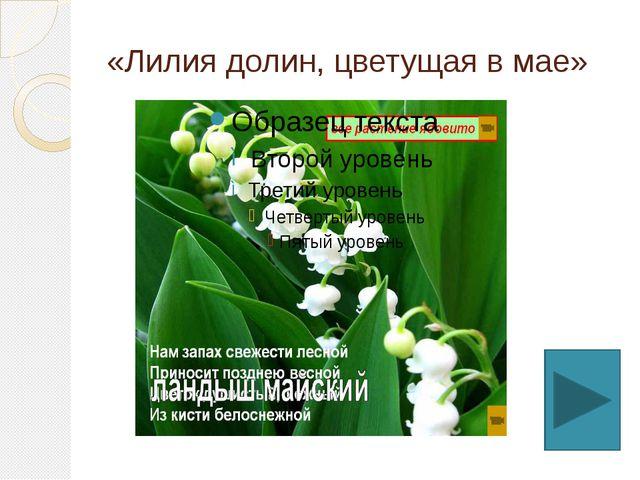 «Лилия долин, цветущая в мае»