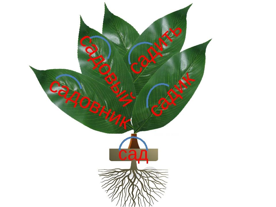 сад садовник садик садовый садить