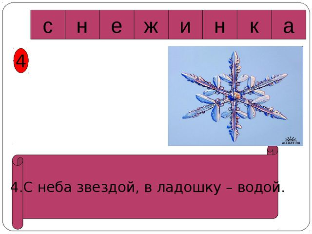 4 4.С неба звездой, в ладошку – водой. c а н к и е ж н