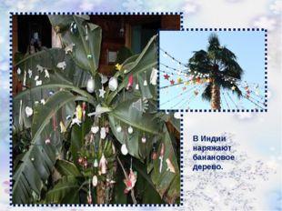 В Индии наряжают банановое дерево.
