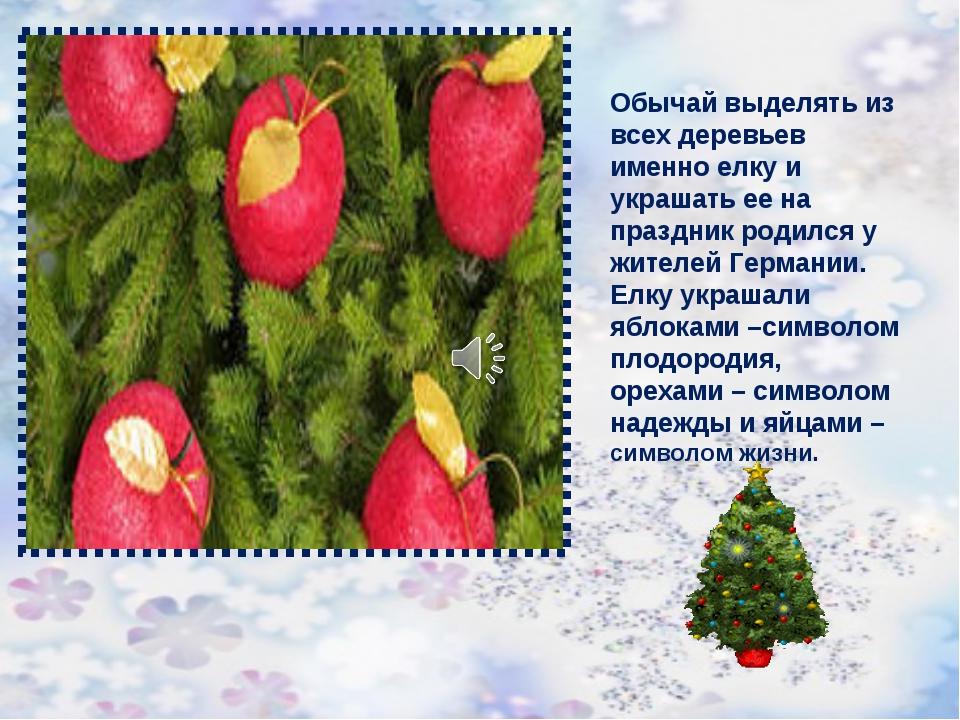 Обычай выделять из всех деревьев именно елку и украшать ее на праздник родилс...