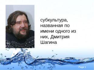 Митьки́ – субкультура, названная по имени одного из них, Дмитрия Шагина Page