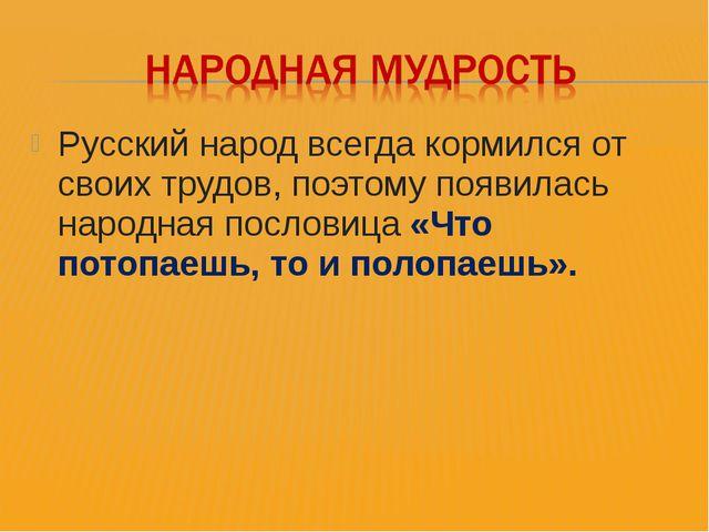 Русский народ всегда кормился от своих трудов, поэтому появилась народная пос...