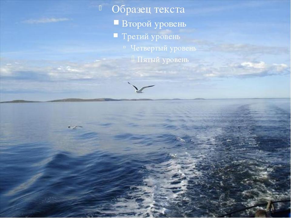 Статус белого моря