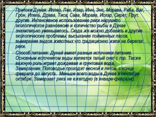 Притоки Дуная: Иллер, Лех, Изар, Инн, Энс, Морава, Раба, Ваг, Грон, Ипель, Др