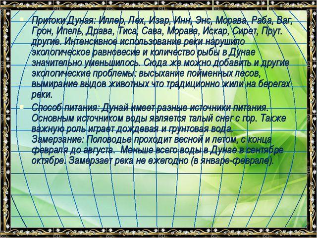 Притоки Дуная: Иллер, Лех, Изар, Инн, Энс, Морава, Раба, Ваг, Грон, Ипель, Др...