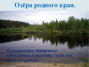 Озёра родного края. На территории Татарстана насчитывается 8111 озёр, среди