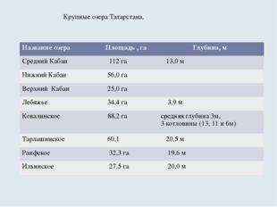 Крупные озера Татарстана. Название озера Площадь , га Глубина, м Средний Каба