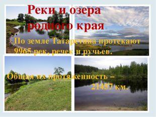 Реки и озера родного края. По земле Татарстана протекают 9965 рек, речек и ру