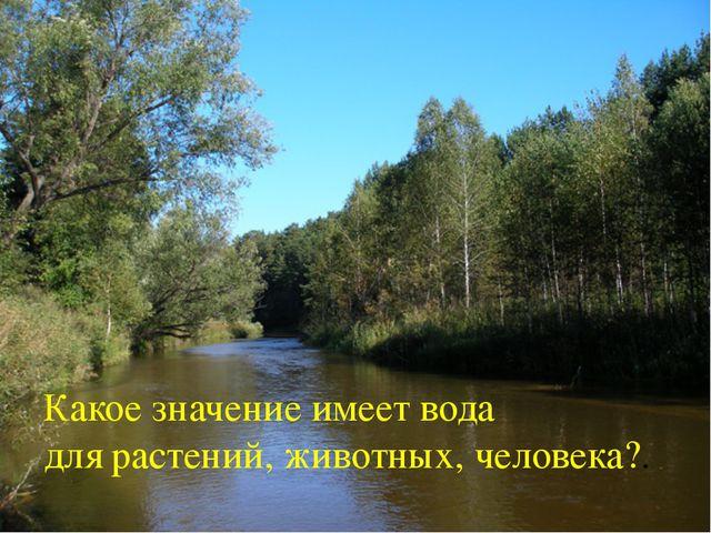 Какое значение имеет вода для растений, животных, человека?.