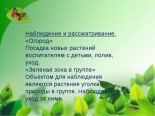 Наблюдение и рассматривание. «Огород» Посадка новых растений воспитателем с д