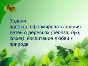 Задачи проекта:сформировать знания детей о деревьях(берёза, дуб, сосна), во