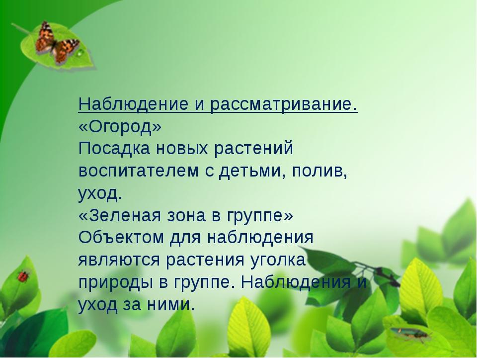 Наблюдение и рассматривание. «Огород» Посадка новых растений воспитателем с д...