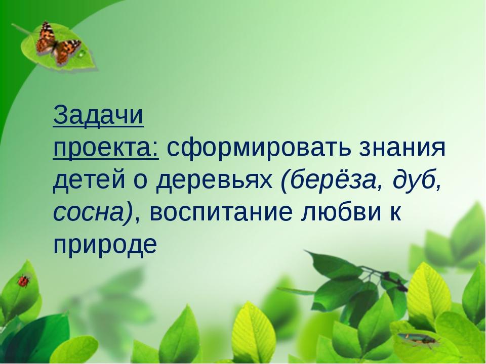 Задачи проекта:сформировать знания детей о деревьях(берёза, дуб, сосна), во...