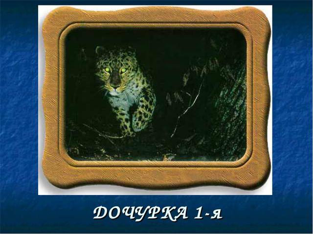 ДОЧУРКА 1-я