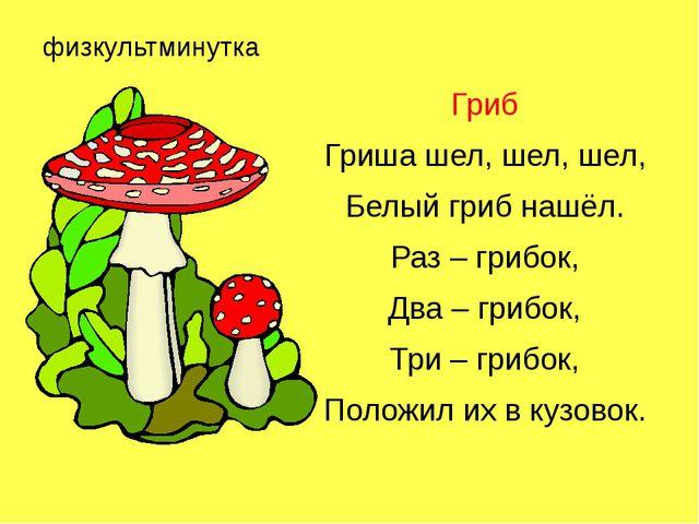 физкультминутка Гриб Гриша шел, шел, шел, Белый гриб нашёл. Раз – грибок, Два...