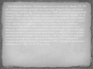 Черноморская афалина. Средняя длина тела половозрелых афалин 220–240 см. Гло