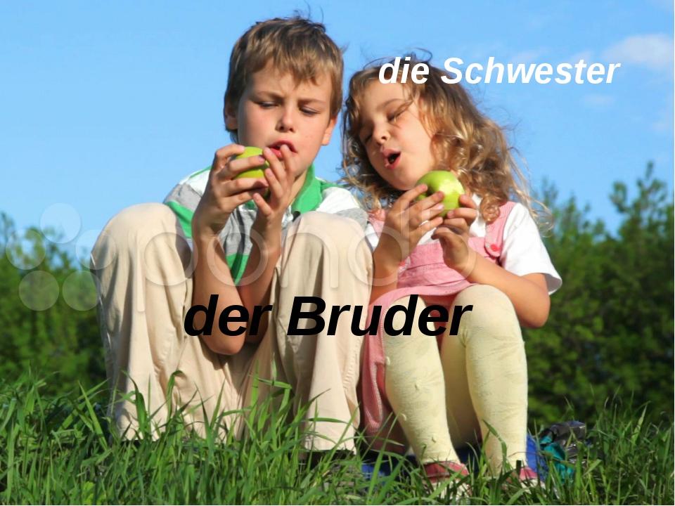 der Bruder die Schwester