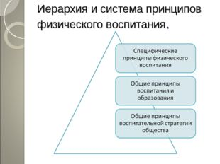 Иерархия и система принципов физического воспитания.