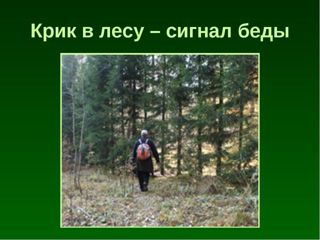 Крик в лесу – сигнал беды