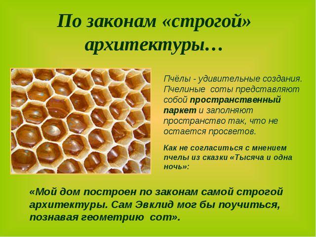 По законам «строгой» архитектуры… Пчёлы - удивительные создания. Пчелиные со...