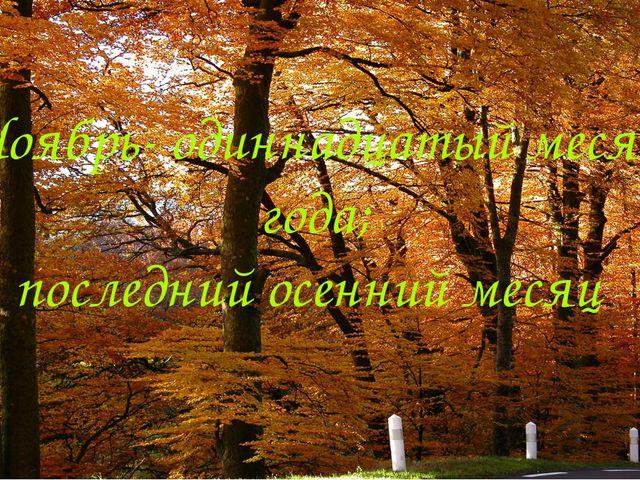 Ноябрь- одиннадцатый месяц года; последний осенний месяц