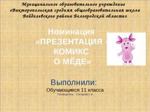 Муниципальное образовательное учреждение «Викторопольская средняя общеобразо