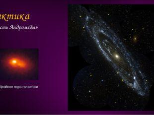 Галактика «Туманность Андромеды» Двойное ядро галактики
