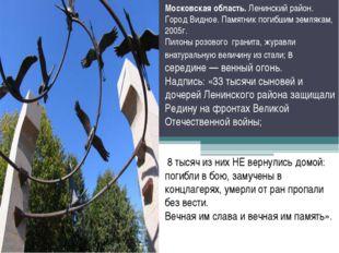 Московская область. Ленинский район. Город Видное. Памятник погибшим землякам