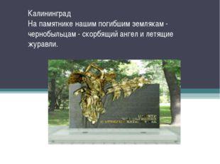 Калининград На памятнике нашим погибшим землякам - чернобыльцам - скорбящий а
