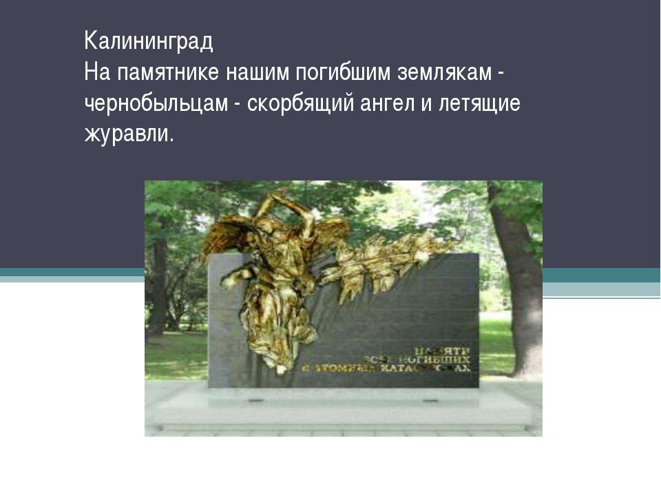 Калининград На памятнике нашим погибшим землякам - чернобыльцам - скорбящий а...