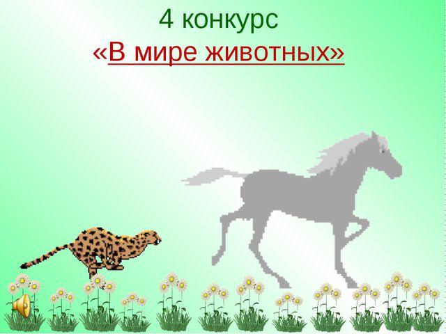4 конкурс «В мире животных»