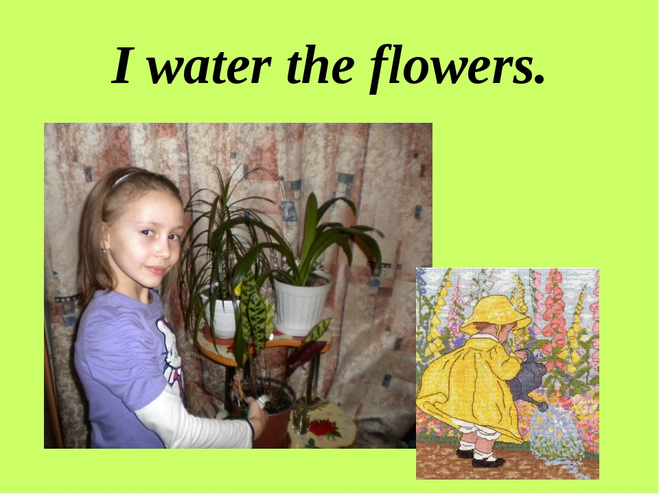 I water the flowers.