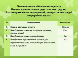 Экономическое обоснование проекта Бюджет проекта за счет родительских средств